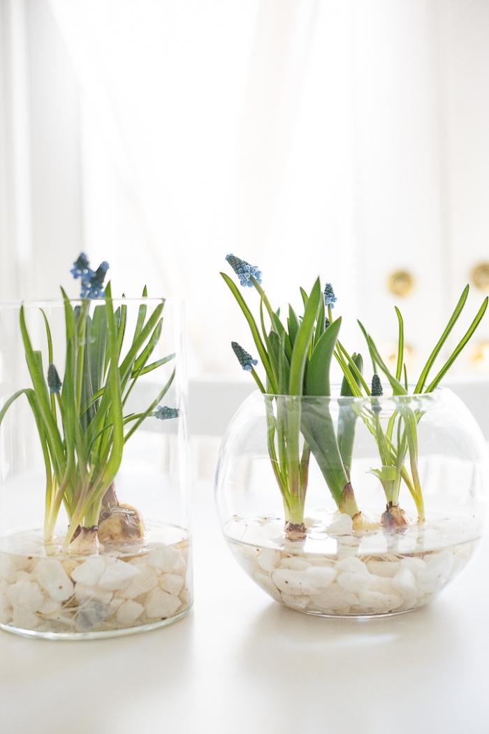 weiße steinem, tischdekoration mit blumen, frühling deko tisch gesteck, glasvasen mit frühlingsblumen