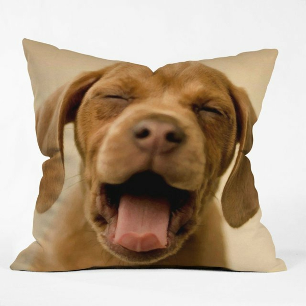 Kissenbedrucken - lustiges design mit einem gesicht vom hund