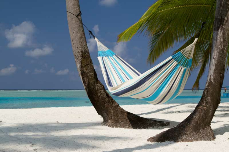 matte-in-weiß-blau-gestreift-an-zwei-palmen-am-strand-edel-luxus
