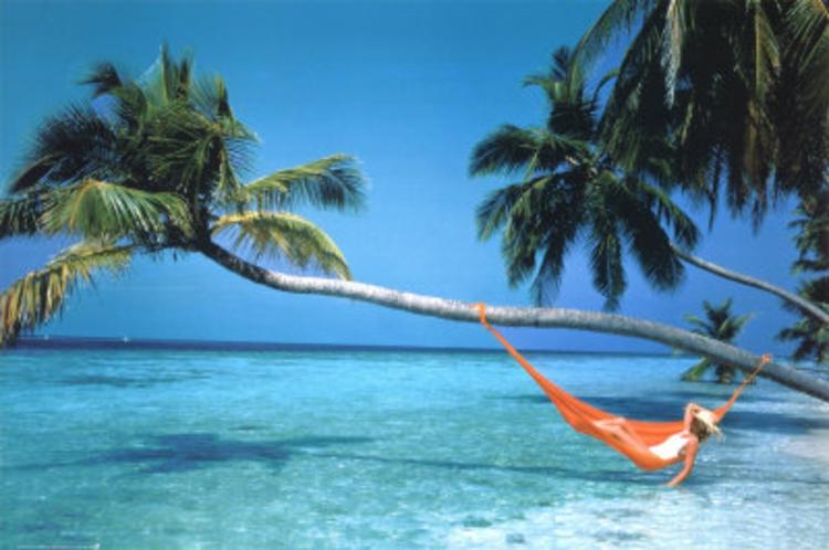 am-strand-entspannung-liege-in-orange-an-palme-über-wasser