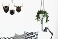 Hängende Pflanzen als Indoor Dekoration