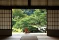 28 Bilder: japanische Schiebetüren!