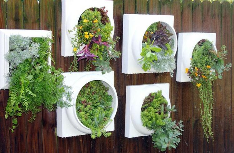 Wandbegrünung hängende pflanzen als indoor dekoration archzine