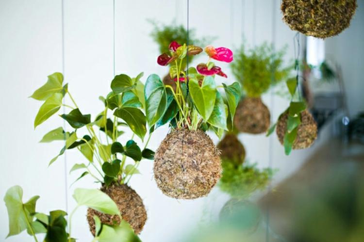 schick-schlicht-modern-besonders-einzigartig-design-luxus-pflanzen-neu-hängend