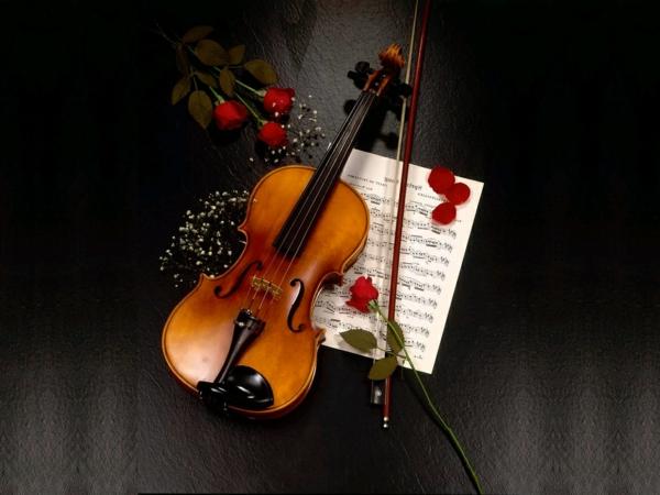 romantischeliebe inspiration - eine geige und rote rosen