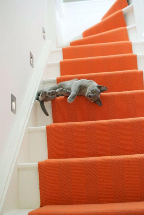 Teppich in bunten Farben - eine katze auf den treppen