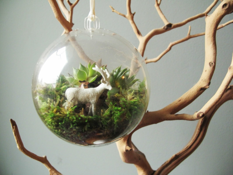 schlicht-besonders-modern-edel-einzigartig-fein-schick-terrarium-glaskugel-grün