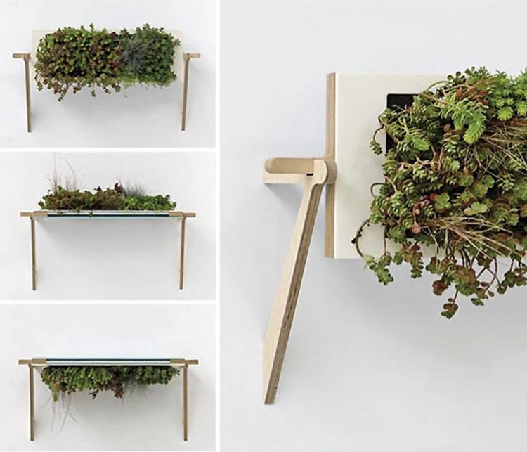 Wand Pflanzen Dekoration Schick Schlicht Besonders Modern Edel