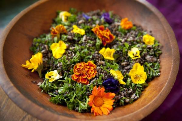 andenhirse-salat-mit-gelben-blumen