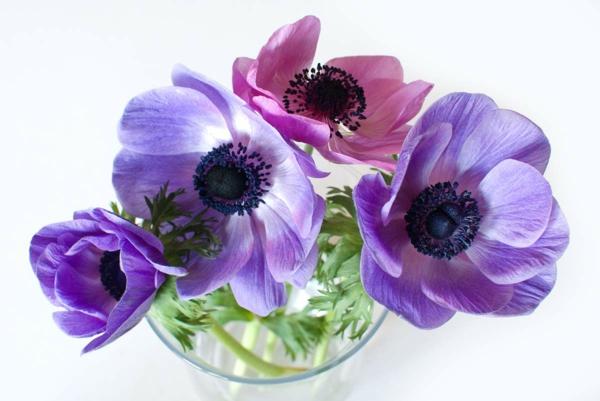 anemonen-lila-und-rosa-blumendeko