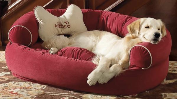 bequemes-hundebett-kissen-hundezubehör-günstig- hundezubehör-online-kissen-