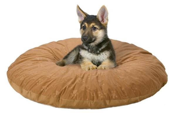 bequemes--hundebett-kissen-hundezubehör-günstig- hundezubehör-online-kissen-