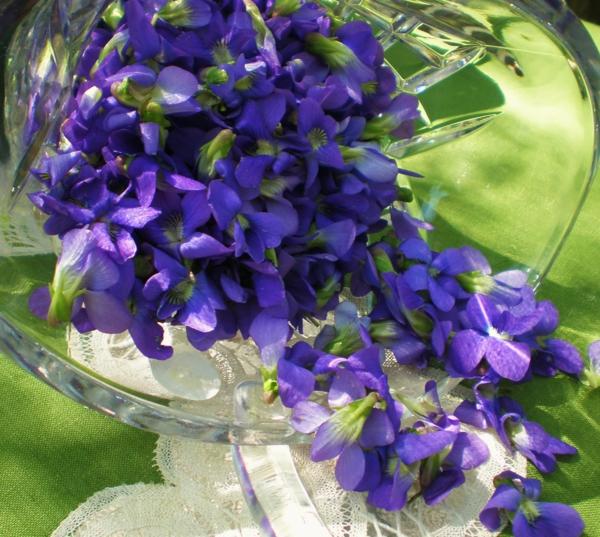 blumen-im-glas-schöne-lila-blumen-blumendeko-ideen-zur-dekoration-lila-blumen-zur-dekoration-blumendeko-