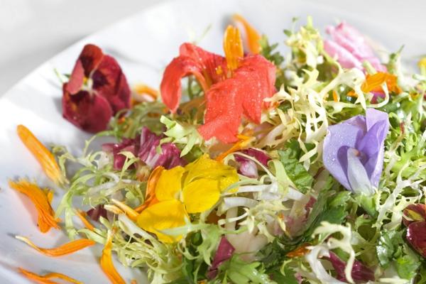 -blumendeko-für-die-salate-blumen-zum-essen-