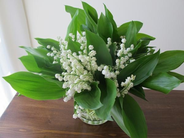 blumendeko-fantastische-blumen-frühlingsdeko-frühlingsblumen-in-weiß