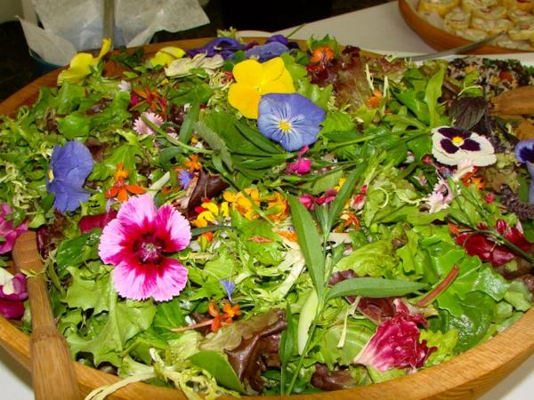 bunte-blumendeko-für-die-salate-blumen-zum-essen--