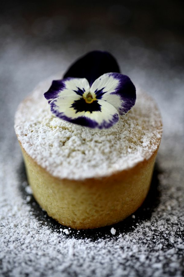 cupcakes-verzieren--veilchen---blumen-zum-essen-cupcakes-verzieren
