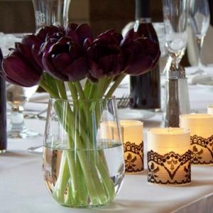 Schwarze Tulpe: 30 atemberaubende Bilder!
