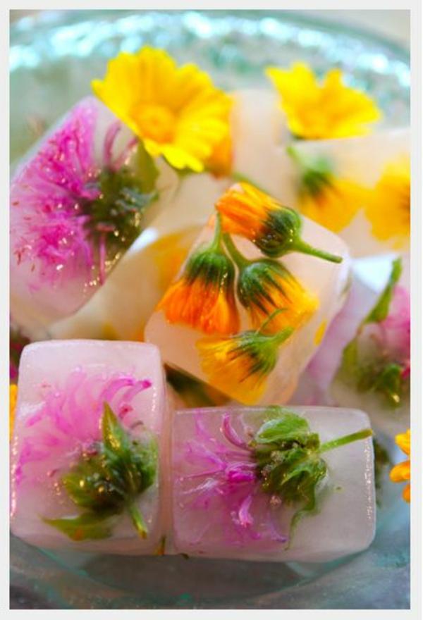 eiswürfel-mit-blüten-blumen-zum-essen-blumen-blüten