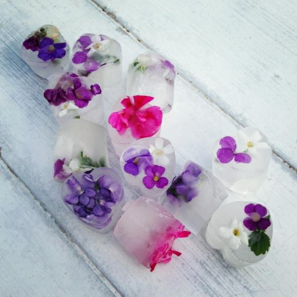 Essbare Blumen – lecker und schön! 105 Fotos