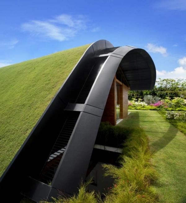 exterior-design-unikale-architektur-form-und-funktion-wand-mit-gras-