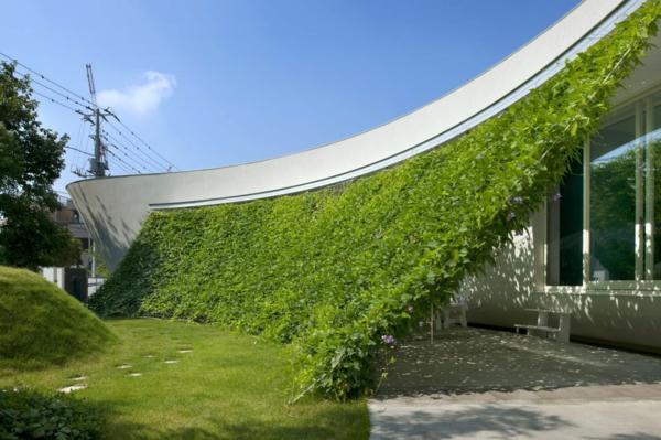 exterior-design-unikale-architektur-form-und-funktion-wand-mit-gras