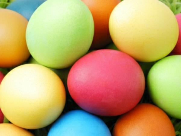 frohe-ostern-bunte-eier- super süße und cooles bild