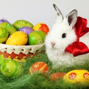 Frohe Ostern! Hier 26 Bilder zum Inspirieren...