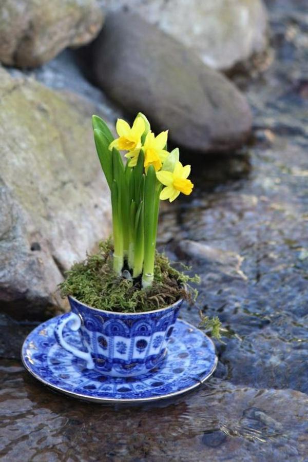 gelbe-narzisse-frühlingsblumen-in-gelber-farbe-osterglöckchen-