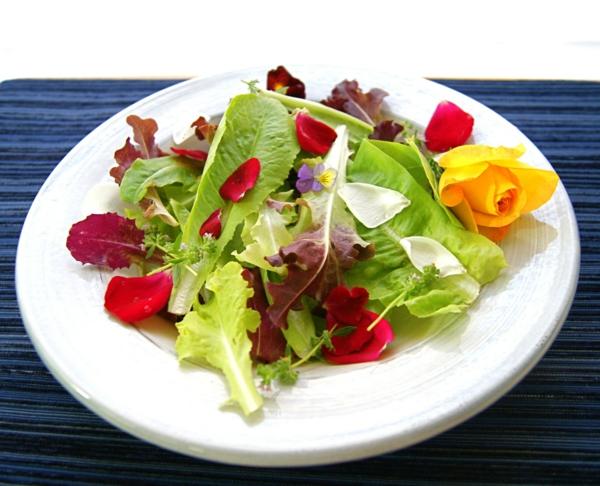 grüner-salat-mit-blüten-in-rot-und-gelb
