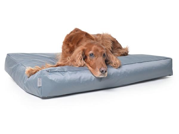 hundekissen-dogs-nylon-grau-hundezubehör-günstig-buntes-kissen-für-den-hund-