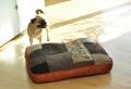 Hundekissen – viele super tolle Modelle!
