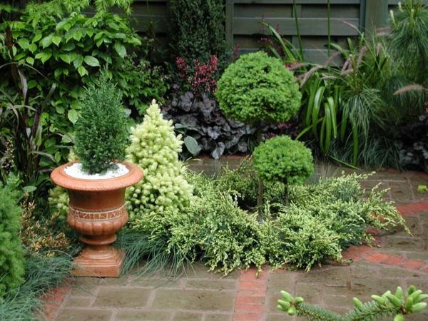 interessante-grüne-pflanzen-kleine-gärten-gestalten