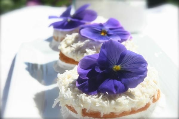kokus-cupcakes-mit-lila-veilchen-