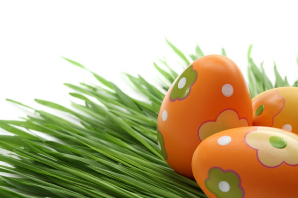 orange-ostereier-bemalen-wunderbare-beispiele-frohe-ostern