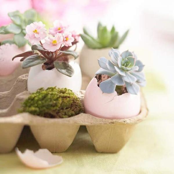 ostereier-ideen-zur-dekoration-ostern-ideen-pflanzen-in-eierschalen