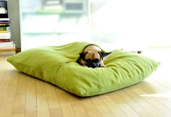 pet-interiors-hundebett-hundekissen-latex-orthopaedisch-wirksam-gruen-pets-premium-hundezubehör-luxus-kissen-für-den-hund