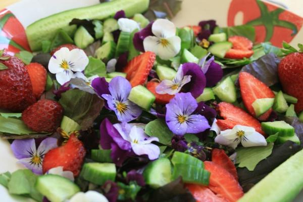 salat-mit-gurken-und-erdbeeren-speisen-deko-floral-blumen-essen-
