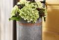 Pflanzenkübel für eine frische Haus-Dekoration!