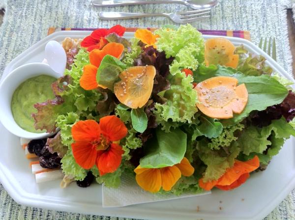 schöne---blumendeko-für-die-salate-blumen-zum-essen