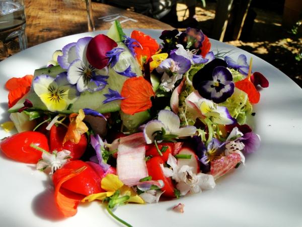 speisen-deko-floral-blumen-essen--veilchen-im-salat