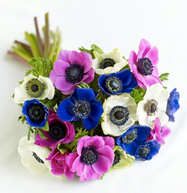 tolle-anemonen-blumenstrauß-mit-schönen-farben