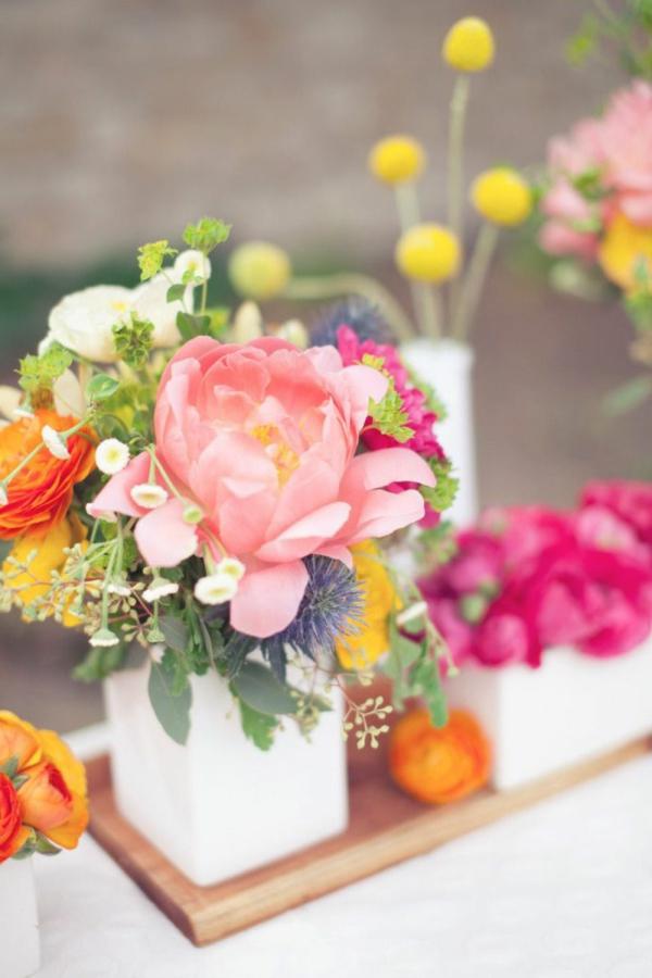 tolle-gestaltung_-tulpen-pflanzen-die-tulpe-tulpen