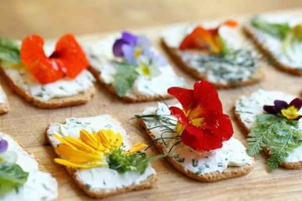 toster--blumen-zum-essen-blumen-blüten