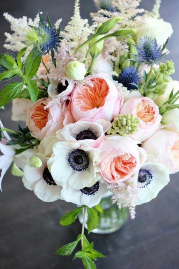 -tulpen-pflanzen-die-tulpe-tulpen-anemonen