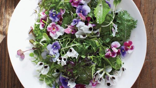 veilchen-blumendeko-für-den-salat-blumen-zum-essen
