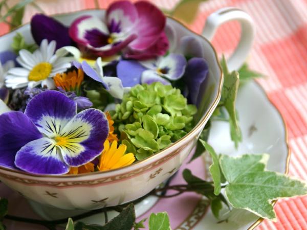 veilchen-und-gänseblümchen-salat