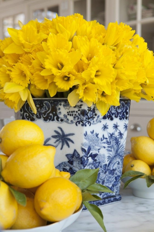 viele-gelbe-narzissen-frühlingsblumen-in-gelber-farbe-osterglöckchen