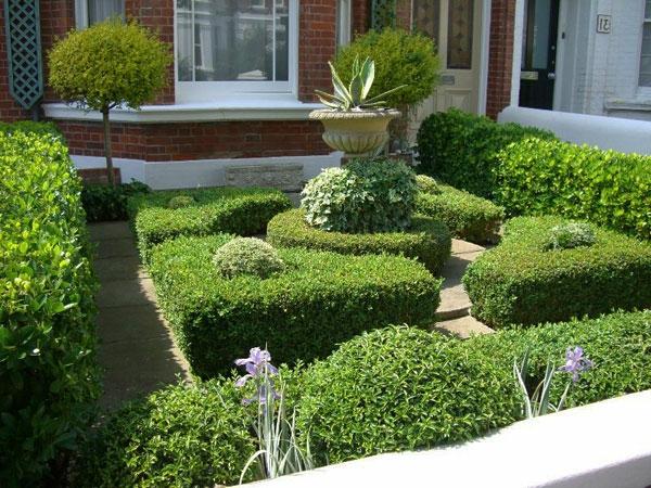 viele-grüne-pflanzen-kleiner-garten-sehr-schön