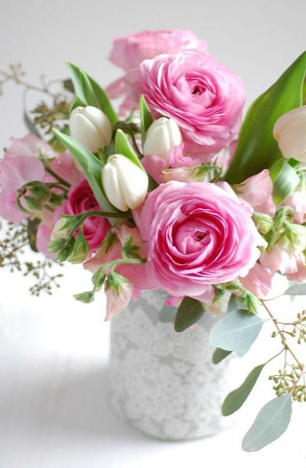 wunderbare-bilder-tulpen-pflanzen-die-tulpe-tulpen-tulpen-kaufen